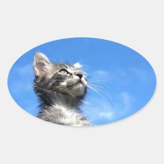 Winston the Tabby Aviator Cat Oval Sticker
