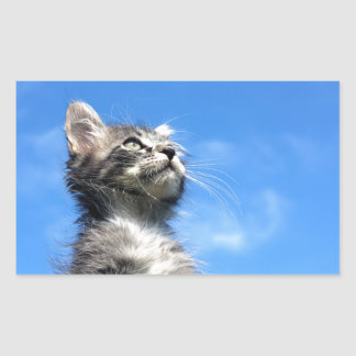 Winston the Tabby Aviator Cat Rectangular Sticker
