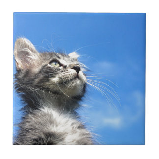 Winston the Tabby Aviator Cat Small Square Tile