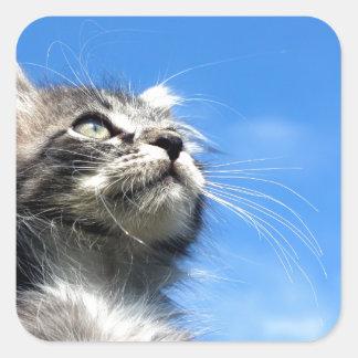 Winston the Tabby Aviator Cat Square Sticker