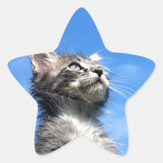 Winston the Tabby Aviator Cat Star Sticker