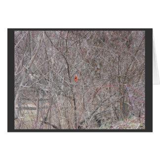 Winter ~ 14 card