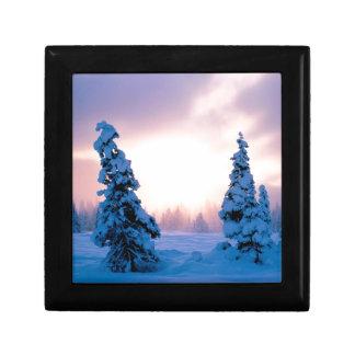 Winter A New Season Awaits Jewelry Boxes