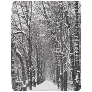 winter alley iPad cover