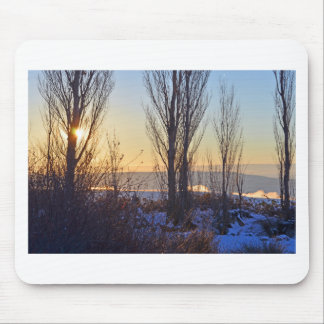 Winter At The Watering Hole Mouse Pads