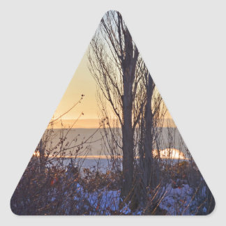 Winter At The Watering Hole Triangle Sticker