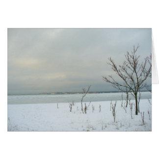 winter beach card