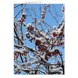 """Winter Berries"" Greeting Card"