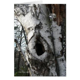 Winter Birch Trees Card