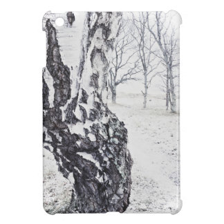 Winter Birches Glossy iPad Mini Case