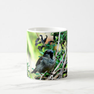 Winter Bird in Lavender Coffee Cup/Mug Coffee Mug