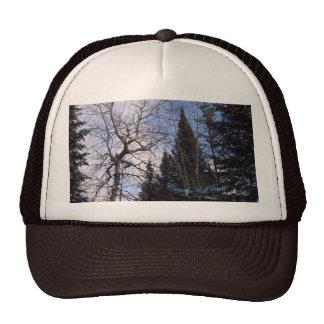 Winter Black Spruce Camino St Croix Cap