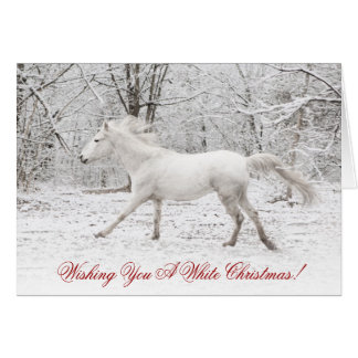 Winter Blizzard Horse Christmas Greeting Card