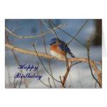 Winter Bluebird Animal Photo Birthday Card