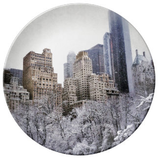 Winter Blues In Central Park Plate