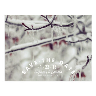Winter Branches Modern Save the Date Postcard