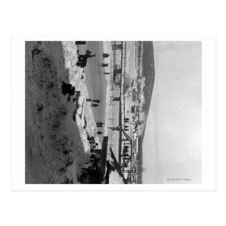 Winter bridge over River at Fairbanks Postcard