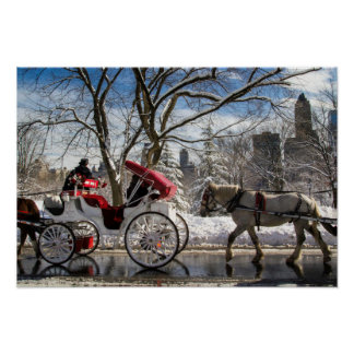 Winter Carriage Horses Poster