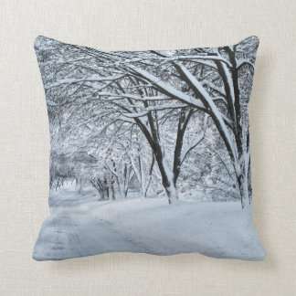 Winter Comfort Cushion
