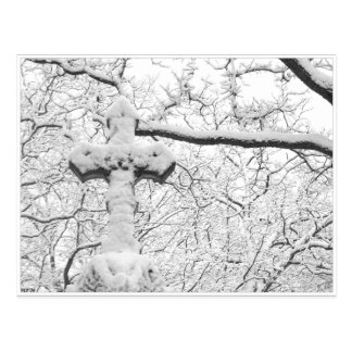 Winter Cross Postcard