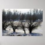 winter - danube river in frosty day print