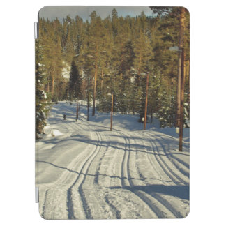 Winter day in Sweden iPad Air Cover