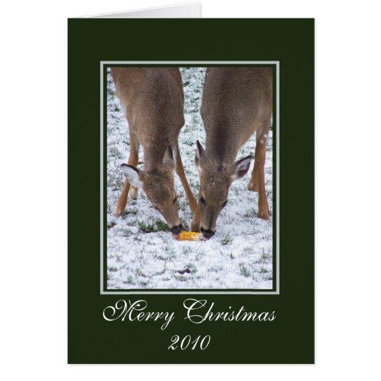 Winter Deer/ Christmas Card