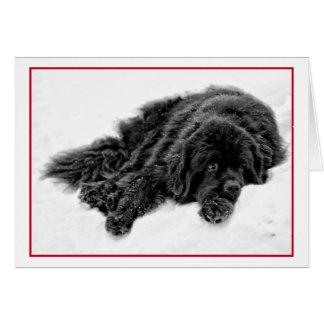 Winter Dreams Card