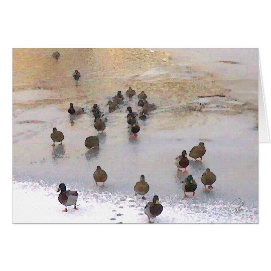 Winter Duck Card