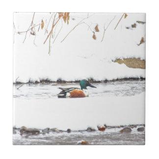 Winter Duck Ceramic Tile