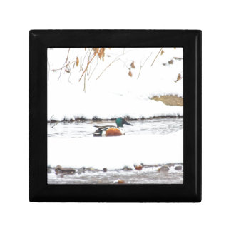 Winter Duck Gift Box