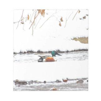 Winter Duck Notepad