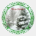 Winter Fir Trees, Merry Christmas