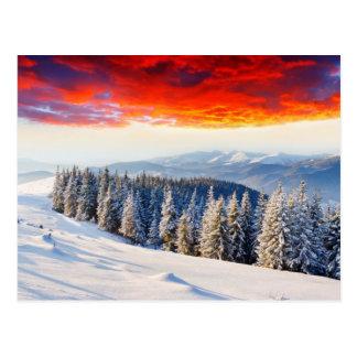 Winter Firesky Postcard