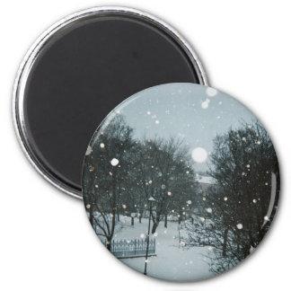 Winter Flakes 6 Cm Round Magnet