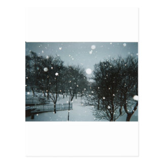 Winter Flakes Postcard
