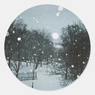 Winter Flakes Round Sticker