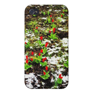 Winter Flowers Covers For iPhone 4