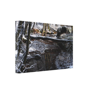 Winter Forest Brook Canvas Prints