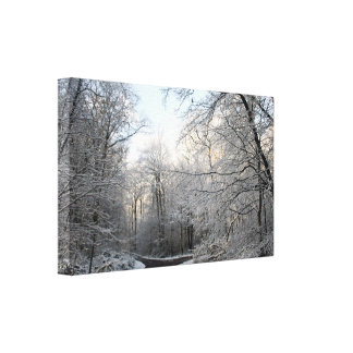 Winter Forest Crossroads Gallery Wrap Canvas