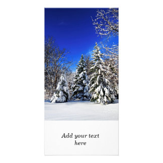 Winter forest customized photo card