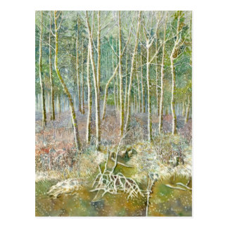 winter forest postcard