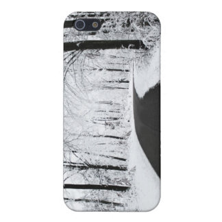 Winter Forest Road Cover For iPhone 5