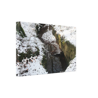 Winter Forest Water Reflection Gallery Wrapped Canvas