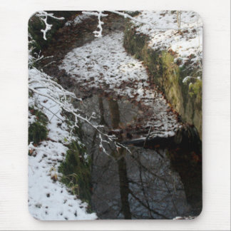Winter Forest Water Reflection Mousepads