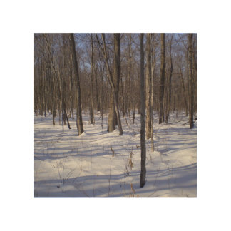 Winter Forest Wood Canvas