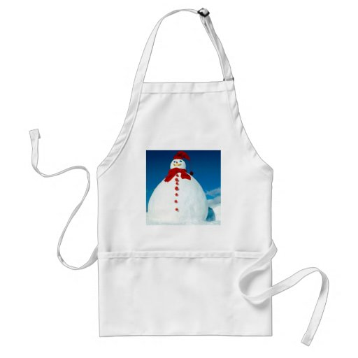 Winter Frostys Cousin Aprons