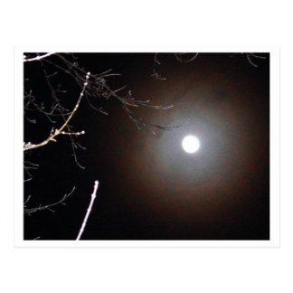 Winter Full Moon Postcard