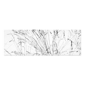 Winter Grass In Snow Art Photo