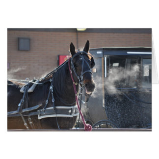 Winter  Horse Hitch Card